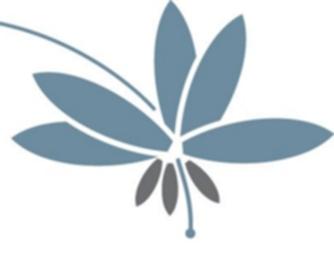 256 pix Flower Logo
